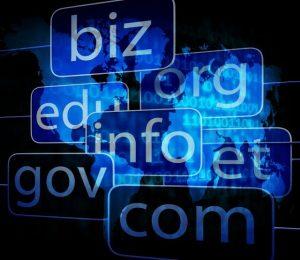DNS Domain Name Service